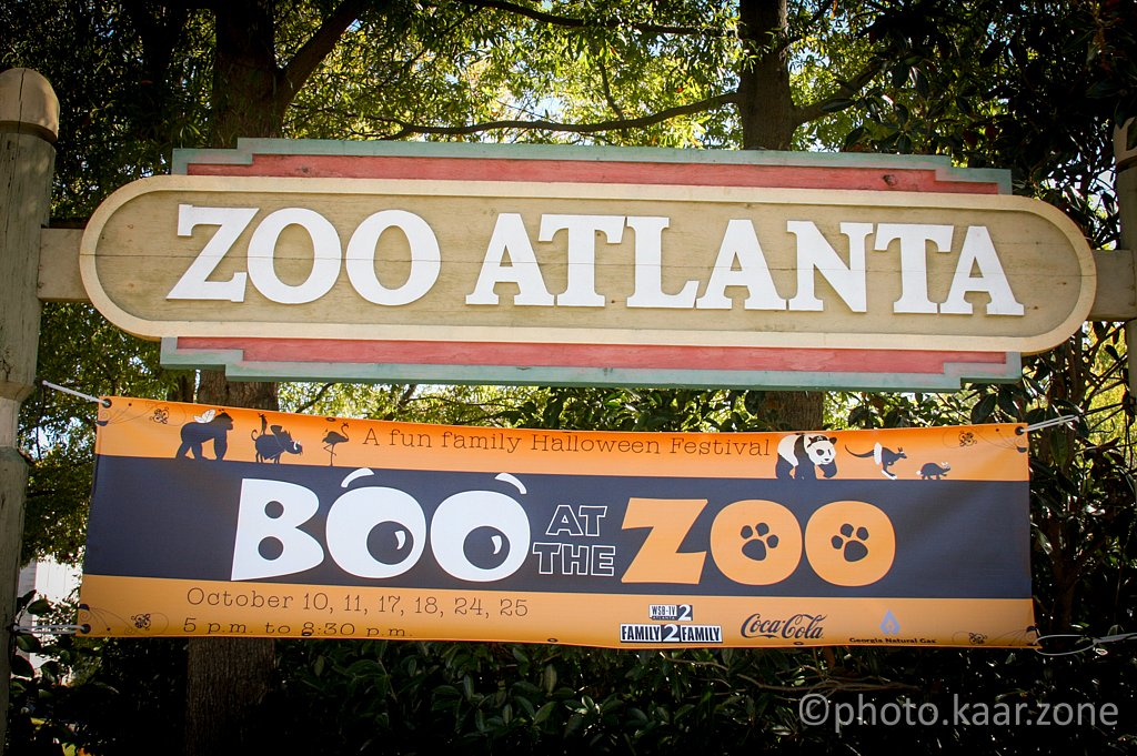 Boo at the Zoo!